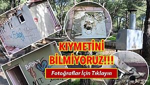 Çanakkale Kepez'de piknik alanındaki manzaraya tepki!
