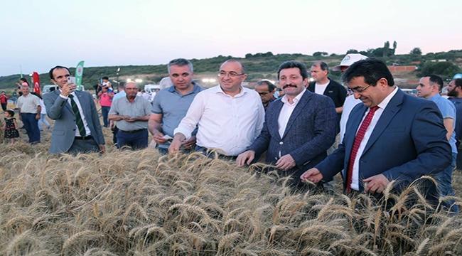 Bereketli Troya topraklarında Buğday Hasadı Yapıldı