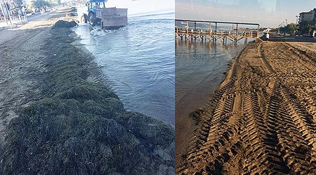 Çanakkale sahillerinde temizlik sürüyor