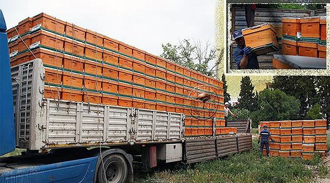 Çanakkale'de 400 arıcıya, 5 bin 750 adet arılı kovan dağıtıldı