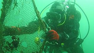 Çanakkale denizleri terkedilmiş av araçlarından temizlendi!