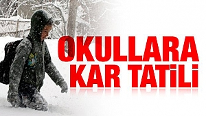 Çanakkale Gelibolu'da okullara kar tatili!