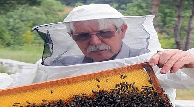 """""""Yediğimiz ette, içtiğimiz sütte arının payı var"""""""