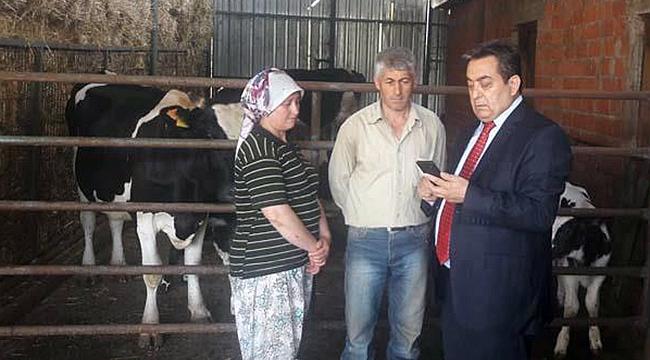Yıldırım düşmesi sonucu ineklerini kaybeden çiftçiye destek