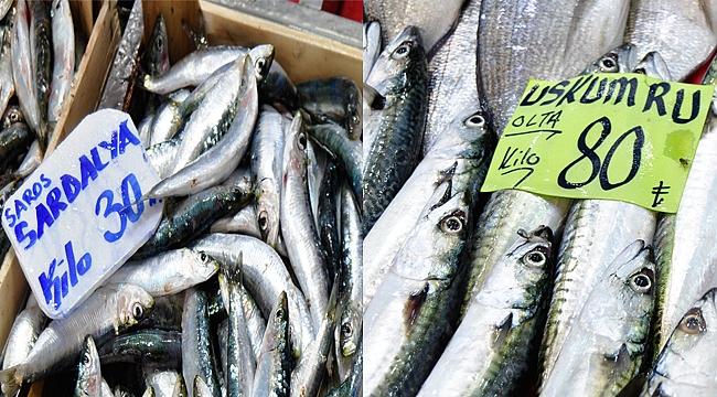 Çanakkale'de balık fiyatları arttı!