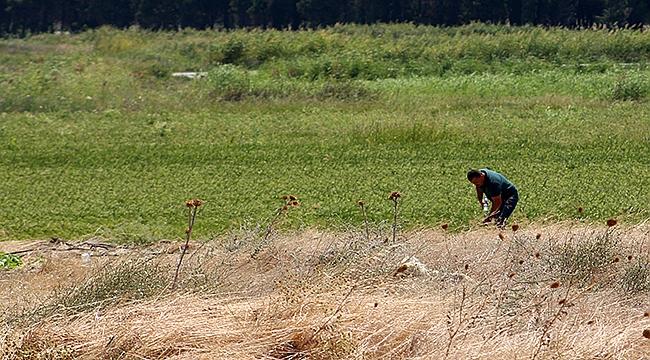 Çanakkale'de kayıp Kumkale Şehitliği 104 yıl sonra bulundu