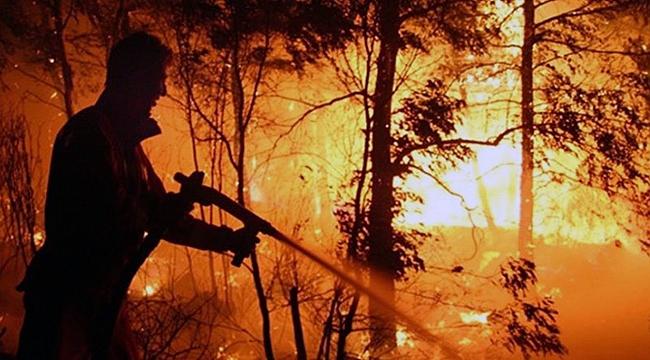 Orman Yangınlarına Karşı Gönüllü Seferberliği
