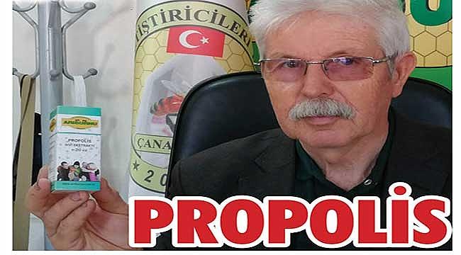 Bağışıklık sisteminin dostu: Propolis