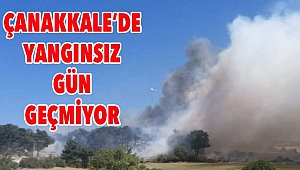 Çanakkale'de bir yangın daha!