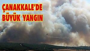 Alevler rüzgarın etkisiyle hızla ilerliyor!