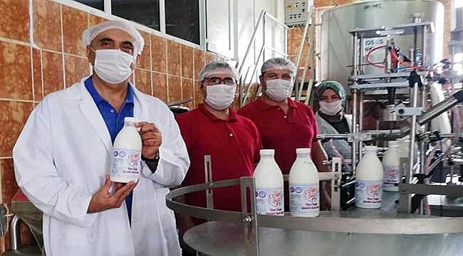 Biga Meslek Yüksekokulunda günlük süt üretimi başladı