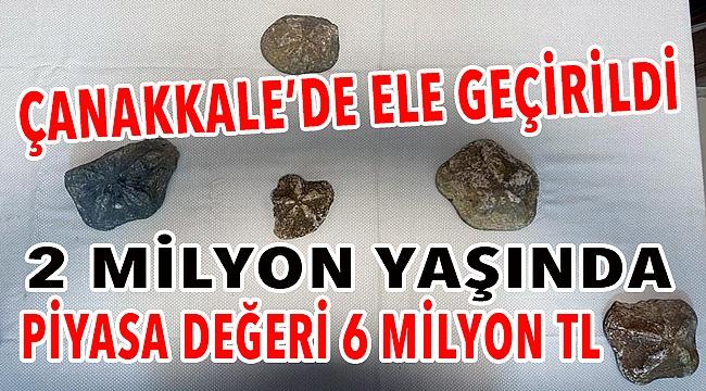 2 milyon yaşında, 6 milyon lira değerinde!