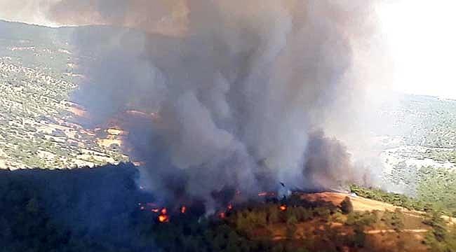 Çanakkale'de orman yangını başladı!