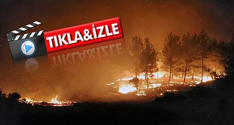 Tarihi Gelibolu Yarımadası'ndaki Yangın Büyüyor