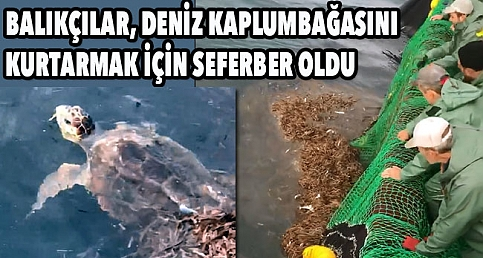 Çanakkale'de balık avı kurtarma operasyonuna döndü